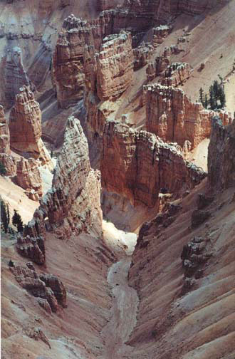 Cedar Breaks National Monument, by erin thomas