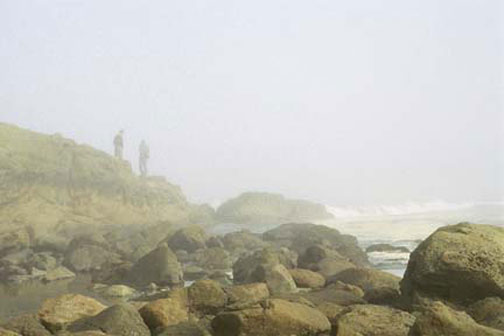 Coastal Morning, Oregon, by erin thomas