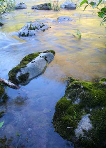 rocks at the edge of the river, by erin thomas